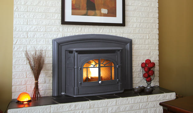 Empress Fireplace Insert Ark Home